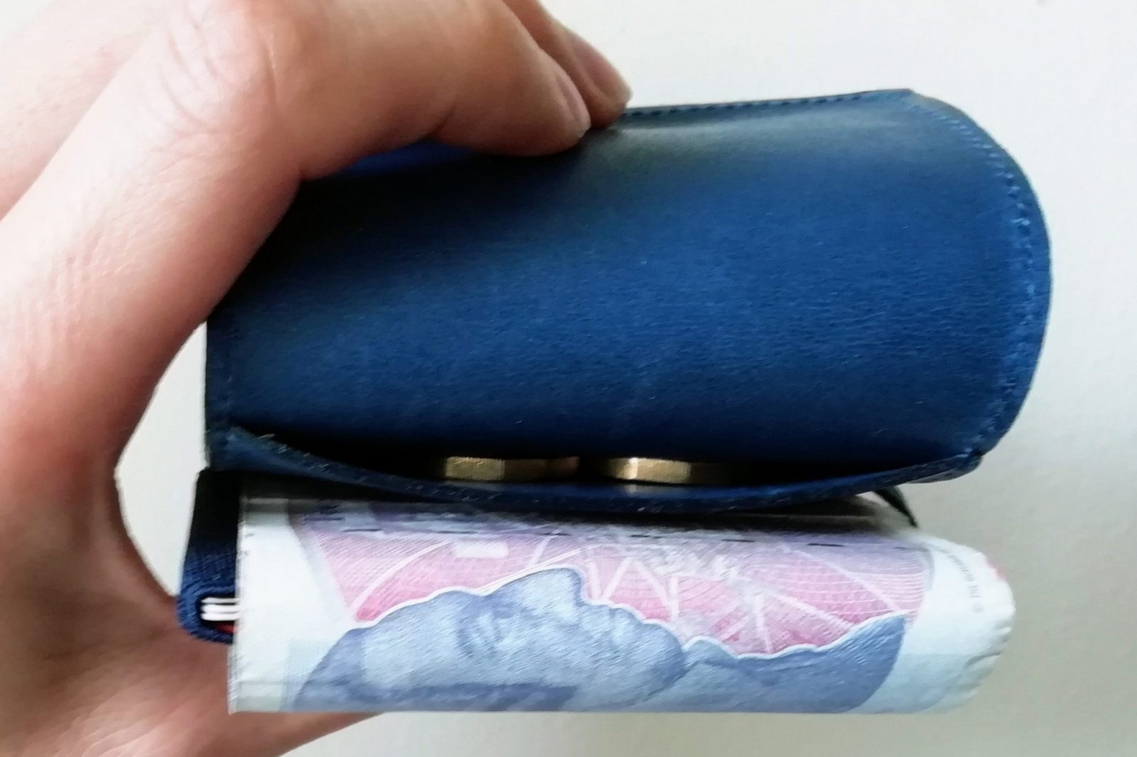 Trove Swift & Cash Wrap Wallet Review: The Perfect Travel Wallet? 4